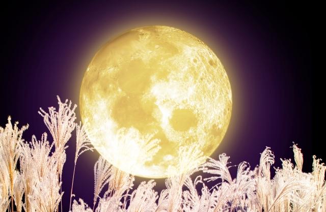 月の癒し効果