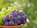 秋の味覚「ぶどう」には美と健康に役立つ栄養がぎっしり!