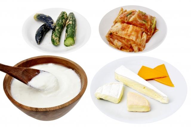 発酵食品の組み合わせ
