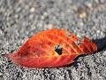 乾燥で肌老化は一気に進む!冬の乾燥対策で潤い美肌へ