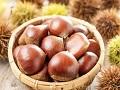 秋を代表する滋養食「栗」の栄養と効果